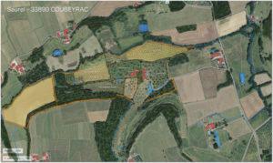 Plan prévisionnel implantation Coubeyrac